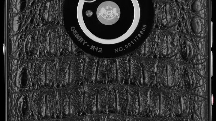 Основная и фронтальная камеры устройства Gemry R12