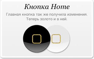 Кнопка Home теперь тоже содержит золото