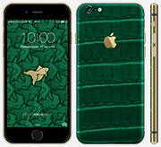 iPhone 6 Iris