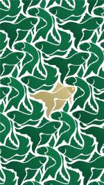 Emerald gold fish white
