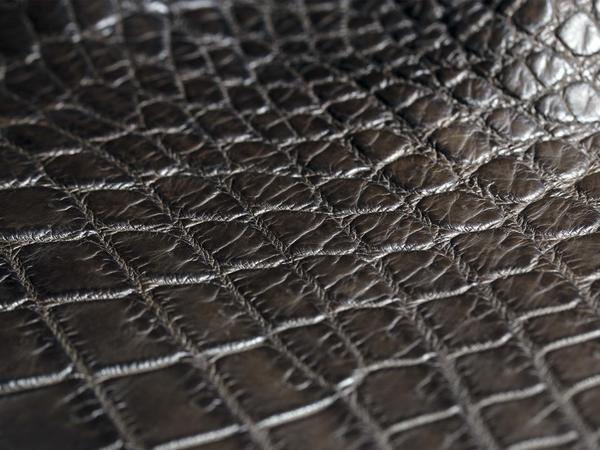 Нильский крокодил, коричневый