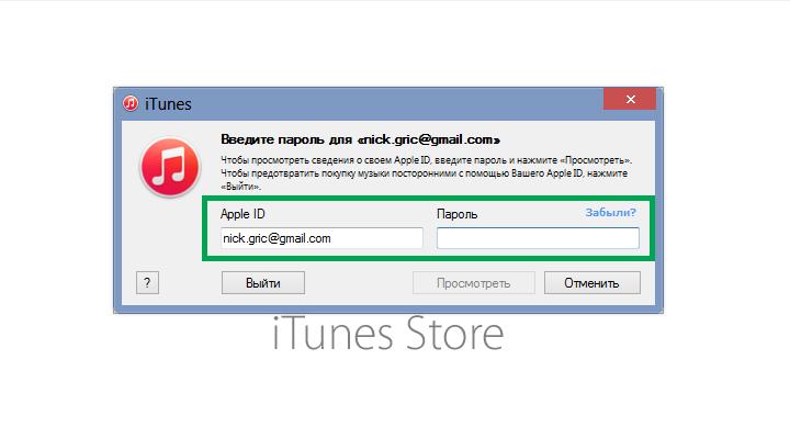 Ввести данные собственной учетной записи Apple ID