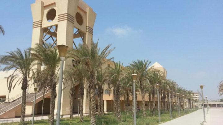Университет Хелуана — базовое профессиональное образование