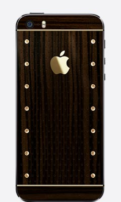 iPhone 5/5s Gold Power