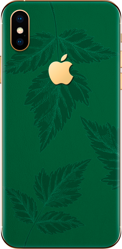 Модель iPhone Xs & Xs Leaf green