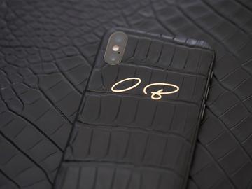 iPhone X Alligator
